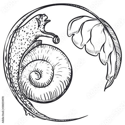 Fotografia, Obraz Hungry Snail Crawling in a Stem to Eat a Leaf, Vector Illustration