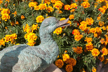 Statue Of A Duck In The Garden...