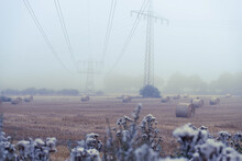 Scenic View Of A Foggy Field W...