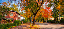 Comfortable And Ecological Urban City Concept. Walking And Bicycle Path. A Woman Walking On The Street In Autumn Town.  Colorful Fallen Leaves On A Road With Red Wooden House. Safe City Scene.