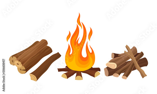 Photo Firewood and Wooden Material Used for Fuel Vector Set
