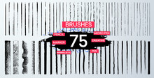 Brush Set Is Inspired By The M...