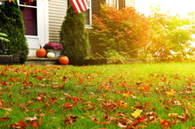 Green Lawn With Bright Fallen Leaves Near The House And Pumpkins With Autumn Flowers On The Porch In The Background.