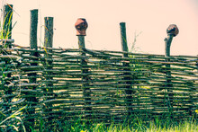 Fence Wicker From The Vine, Te...