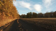 The Camera Moves Along A Dirt Road Between A Field And An Autumnal Oak Forest