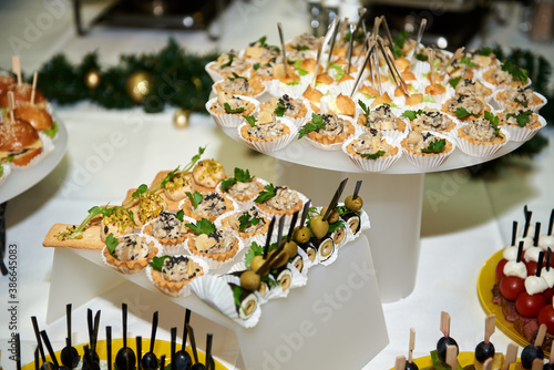 Fotografie, Obraz Buffet table with snacks, canape and appetizers at luxury Christmas party, copy space