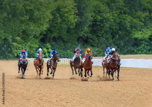 Cuadros en Lienzo jockey horse racing horses jump to the finish line on sandy ground