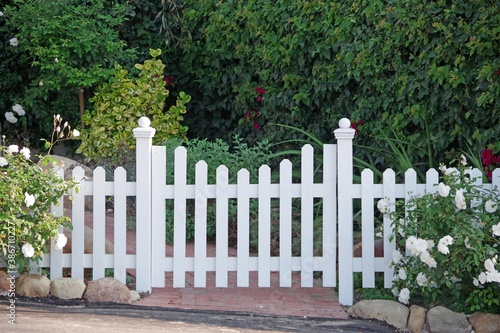 Fotomural White picket fence with a gate and white roses on the left and right
