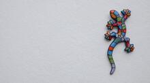 Salamander In Wall