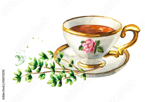 Obraz Cup of tea with Thyme. Hand drawn watercolor illustration isolated on white background - fototapety do salonu