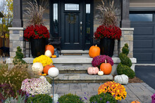 Autumn Decoration With Pumpkins