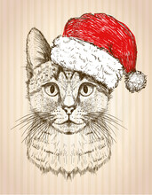 Graphic Cat Portrait Dressed In Santa Hat, New Year Card