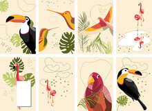Set Of Vector Cards With Tropi...