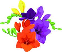 Beautiful Multi-colored Freesi...