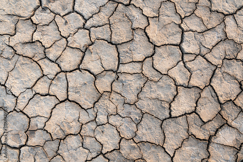 Cuadros en Lienzo Drought cracking earth texture background