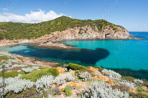Fototapeta Su Cardulinu beach, Chia, Domus de Maria, Cagliari district, Sardinia, Italy, Europe obraz na płótnie