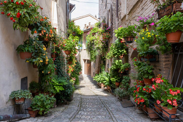 Panel Szklany Architektura Charming floral decorated streets of medieval towns of Italy. Spello in Umbria