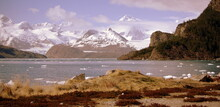 Glacier Marinelli, Canaux De Magellan, Patagonie, Chili
