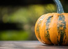 Small Decorative Autumn Pumpki...