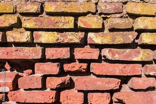 Fotografie, Tablou Textura de pared de ladrillos viejos