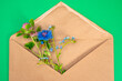 Leinwandbild Motiv Wild flowers in a craft envelope. Forget-me-not, clover and cornflower. Impression of a holiday in the village. Wild flowers in a letter. A story about summer. Envelope and wildflowers.