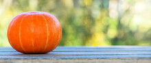 One Pumpkin Lies On The Left N...