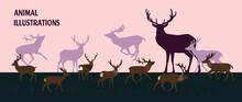 Deer In The Meadow, Deer Illus...