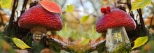 A Magical, Fantastic Forest With Autumn Yellow Leaves On A Blurry Background. Fairy Houses With Windows Made Of Old Mushrooms For Gnomes With A Roof Made Of Fly Agarics. Selective Focus,panorama