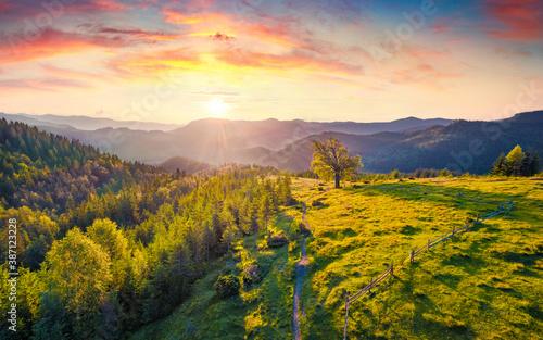 Obraz View from flying drone. First sunlight glowing mountain valley at June. Astonishing summer scene of Carpathian mountains, Dzembronya village location, Ukraine, Europe. - fototapety do salonu