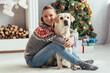Leinwandbild Motiv happy woman in sweater sitting on floor with labrador near decorated christmas tree