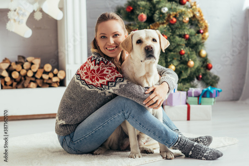 Obraz happy woman in sweater sitting on floor with labrador near decorated christmas tree - fototapety do salonu