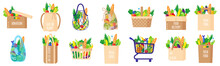 Vector Cartoon Set Of Paper Grocery Bags, Baskets, Cart, Box, Turtle Bag With Healthy Food Isolated On White Background