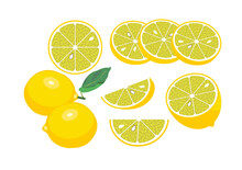 Vector Set Of Colored Fresh ...