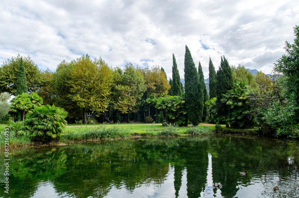 Fototapeta ogród woda