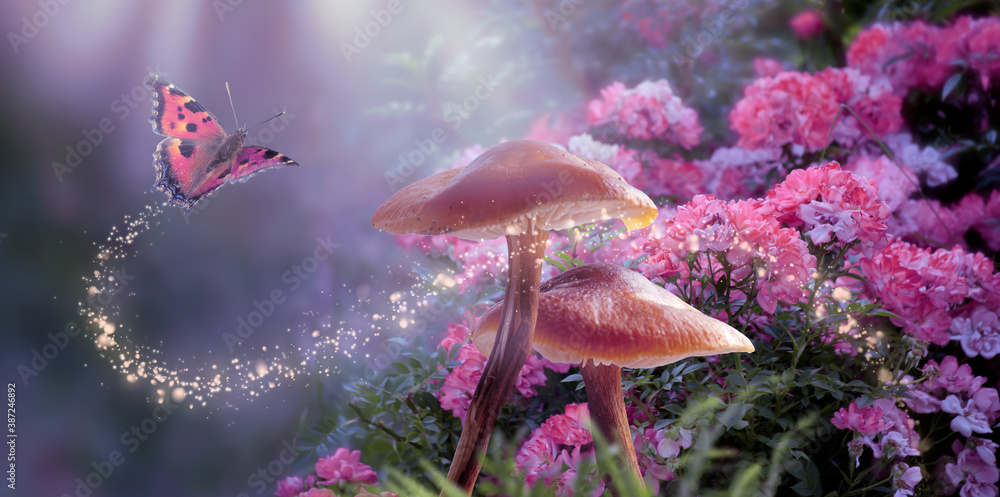 Fototapeta Fantasy Magical Mushrooms and Butterfly in enchanted Fairy Tale dreamy elf Forest with fabulous Fairytale blooming pink Rose Flower on mysterious Nature background and shiny glowing moon rays in night