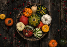 A Lot Of Ripe Different Colored And Shaped Squashes In A Basket On Rustic Wooden Background. Harvest Of Pumpkins For Halloween Party.