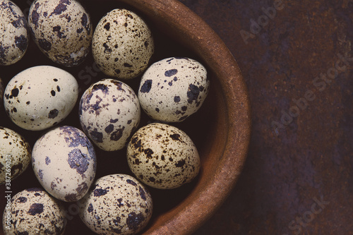 Several multi-colored quail eggs in an oval terracotta boul, on a dark backgroun Canvas Print