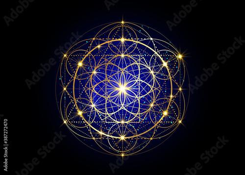 Fényképezés Seed of life symbol Sacred Geometry