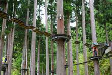 森の中の吊橋のアクティビティ