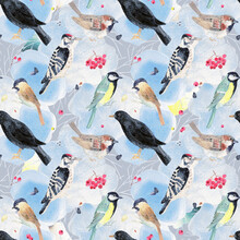 Watercolor Seamless Pattern With Birds. Winter Backyard Birds Background