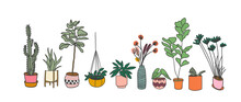 Potted Plants Collection. Succulents And House Plants. Hand Drawn Vector Art. Set Of House Indoor Plant Vector Cartoon Doodle