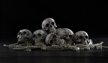 Pile Of Old Skulls And Bone Pu...