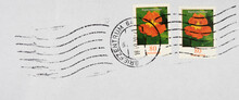 Briefmarke Stamp Gestempelt Used Frankiert Flower Blume Orange Kapuzinerkresse Welle Wave Pflanze Plant 80 Garten Natur