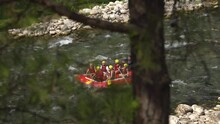 Group Of Happy Tourists In Helmets And Vests Rows Red Inflatable Boat Along Fast Mountain River Past Rocky Banks At Rafting Tour View From Bank Through Fir Tree Branches.