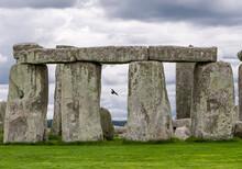 Stonehenge Raven