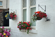 Display Of Colourful Summer Flowers In Hanging Baskets Against White Painted Building