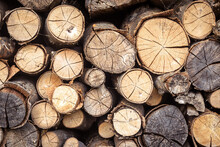 Firewood Pile, Pattern With Ends Of Logs Close-up. Woodpile Of Brown Timber, Stack Of Rough Sawn Trees With Bark