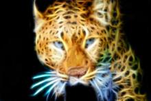 Fractal Computer Animal Leopard On A Black Background.