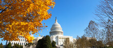 Capitol Building Grounds On Sunny Day. Autumn Colors Of Maple Tree Contrast With Blue Skies.