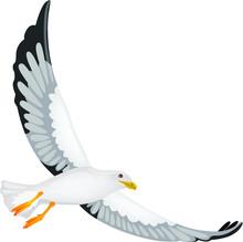 Vector Illustration Of A Seagull In Flight